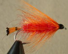 Threestripe Orange