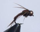 bead head pheasant tail copper