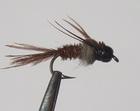 Dr g Pheasant Tail