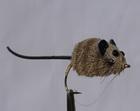 kleine und mittelgroße Maus