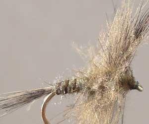 CDC-Fliegen